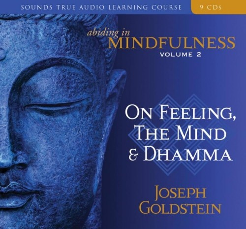 Abiding in Mindfulness Volume 2