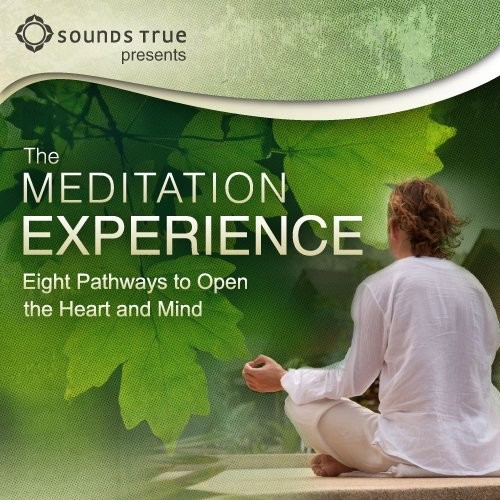 The Meditation Experience