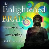 The Enlightened Brain Online Course
