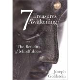 7 Treasures of Awakening